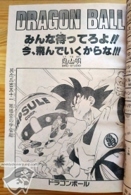 wsj1989-51-DragonBall