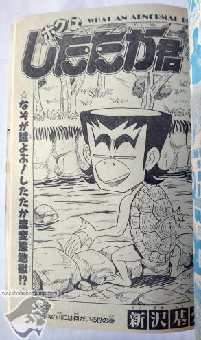 wsj1989-37-Shitakata
