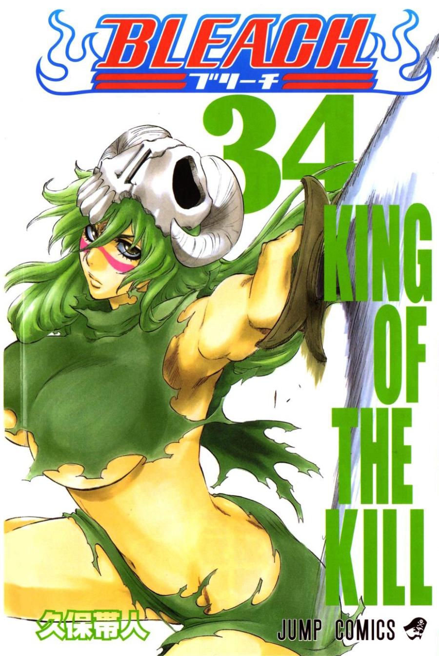 Bleach-34-shueisha
